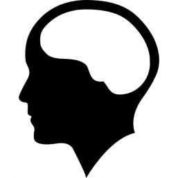 cerebro-dentro-da-cabeca-humana_318-46850